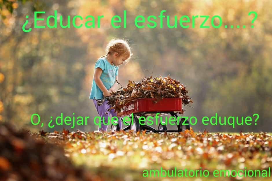 Educar el esfuerzo o dejar educar el esfuerzo